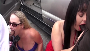 Wild along with Dee Siren got her pussy pounded
