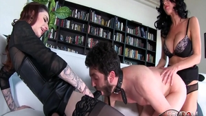 Hawt Veronica Avluv ass pounded